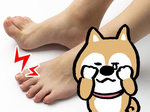 足の爪と管理人(イメージ)